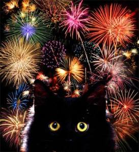 cat_fireworks